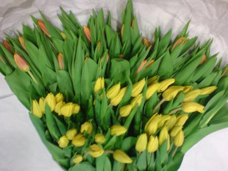 Λουλουδια - λουλούδια louloudi louloudia gamos